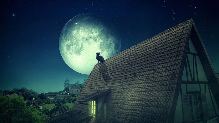 Магическая сила полной луны